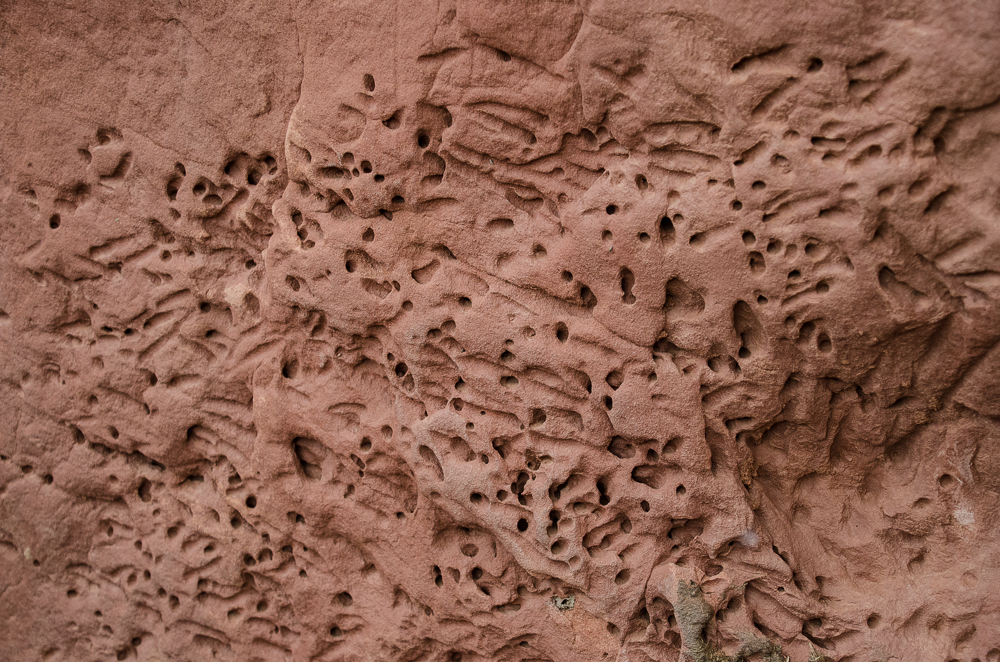 Holes in sandstone